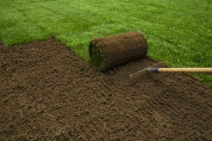 sod-installation
